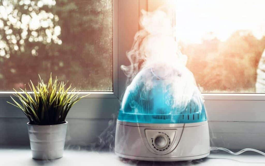 What Does a Humidifier Do